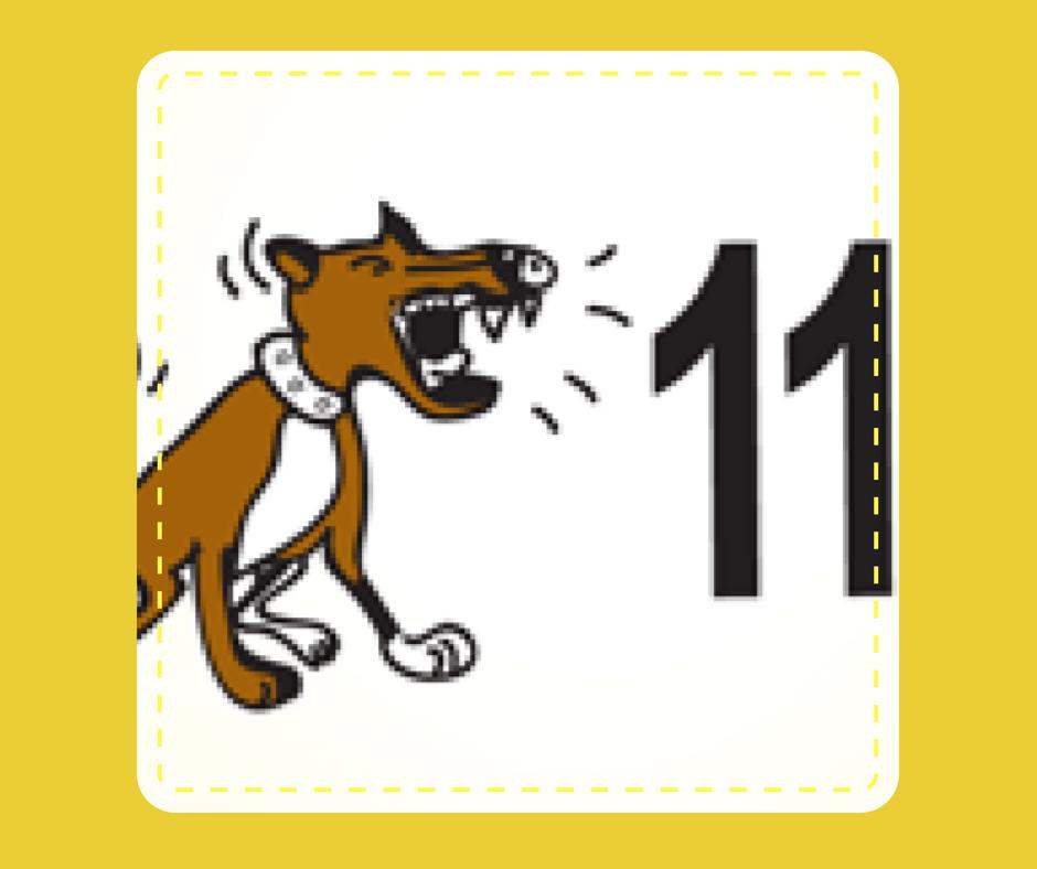 11 - Dog