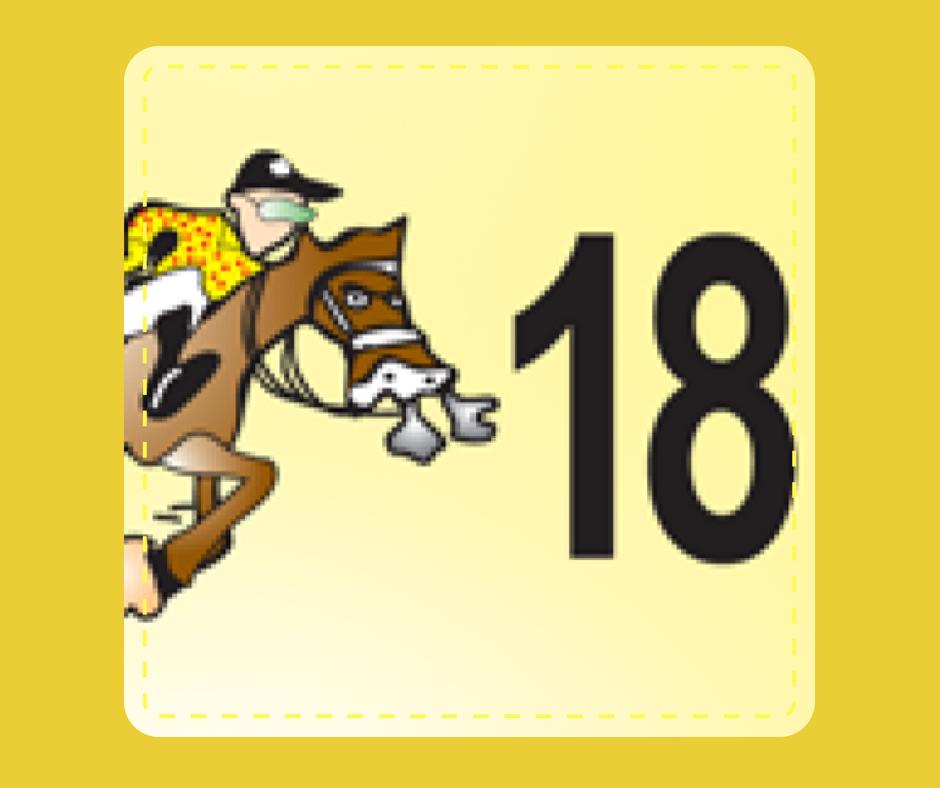 18 - Race Horse