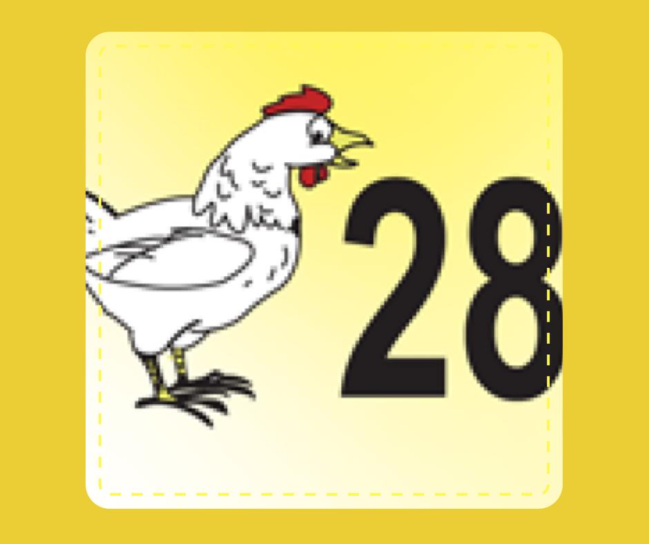 28 - Fowl