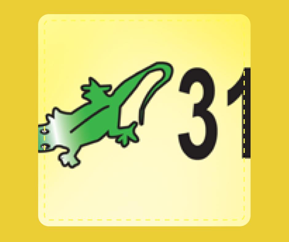 31 - Lizard